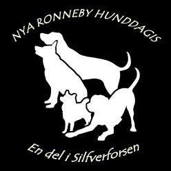Nya Ronneby Hunddagis